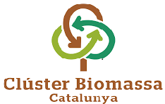 Cluster biomassa