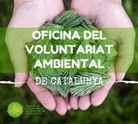 Oficina voluntariat